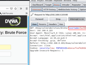 dvwa brute force low level security