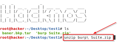 Unzip the Zip and Tar Files