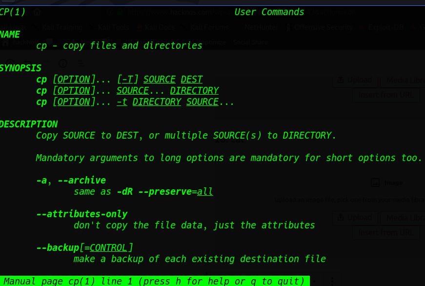 Important Command Linux