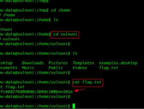 VulnUni: 1.0.1 Walkthrough Vulnhub