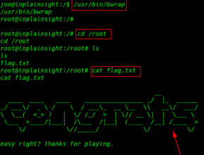 In Plain Sight: 1.0.1 walkthrough vulnhub