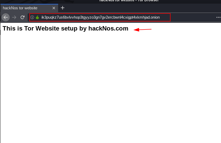 Onion Website DarkWeb setup, dark web links , deep web links