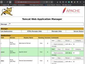 My Tomcat Host: 1 Walkthrough Vulnhub | My Tomcat Host: 1 Write-up Vulnhub