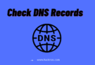 check dns records online