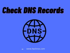 check dns records online